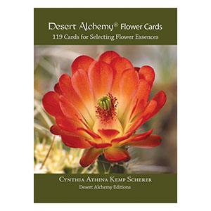 Desert Alchemy Flower Cards